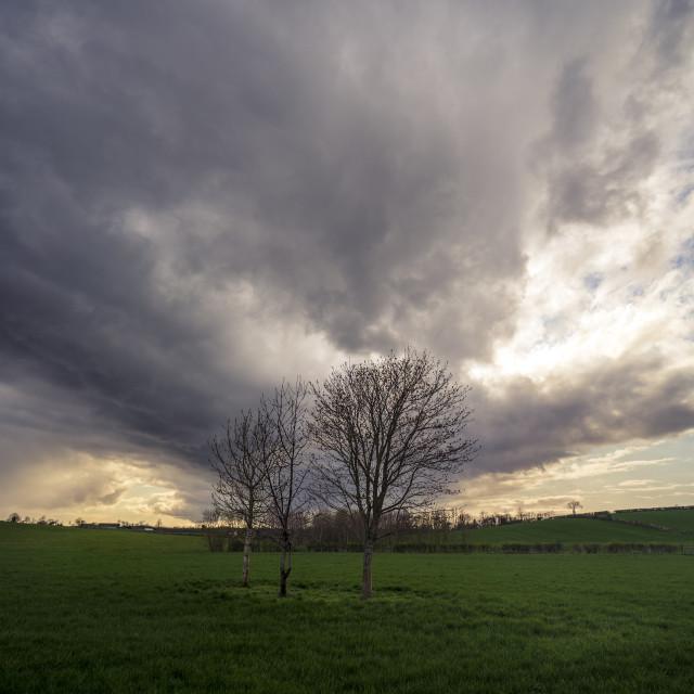 """""""Skies of Cloud"""" stock image"""