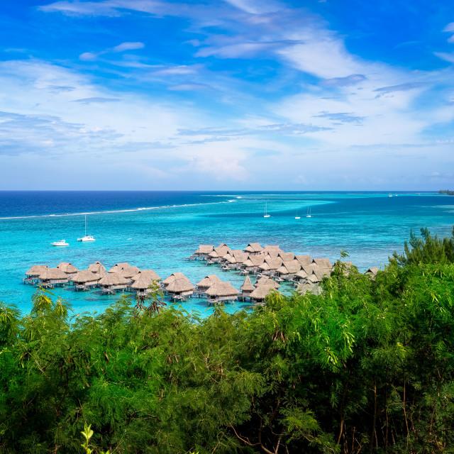 """Overwater Bures in Mo'orea Tahiti"" stock image"