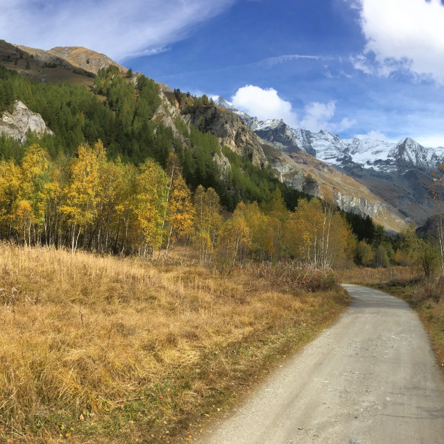 """""""road crossing autumnal landscape in mountain in panoramic view"""" stock image"""