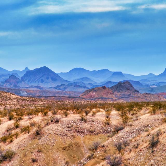 """West Texas Landscape"" stock image"