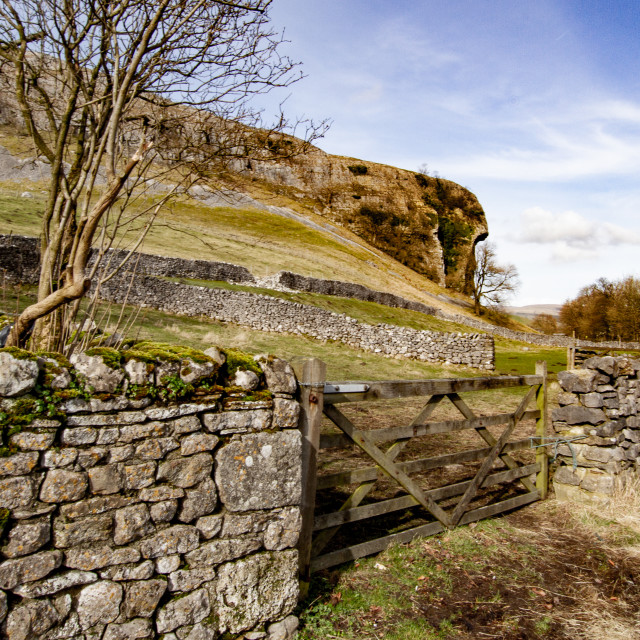 """Kilnsey Crag, Kilnsey, Upper Wharfedale. Dry Stone Wall and Field Gate to Foreground."" stock image"