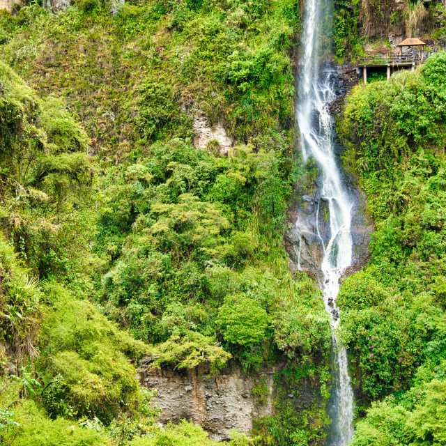 """""""Small Waterfall in Tropical Rainforest"""" stock image"""