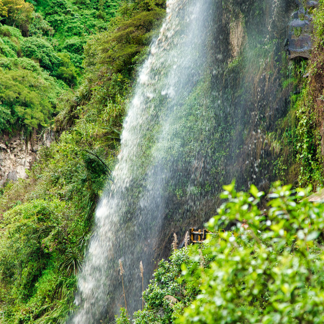 """""""Waterfall in Tropical Rainforest"""" stock image"""