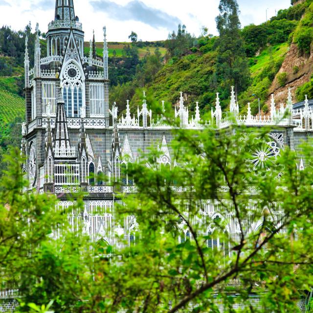 """View of Las Lajas Through Tropical Foliage"" stock image"