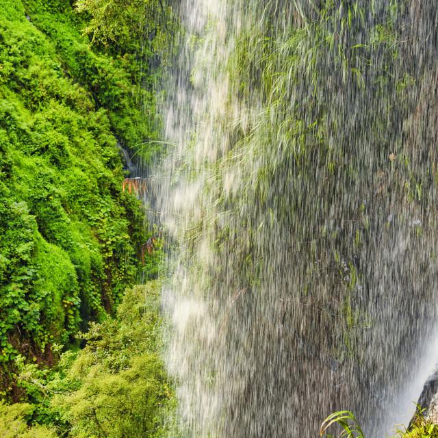 """Tropical Rainforest Waterfall"" stock image"