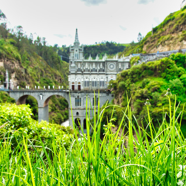 """View of Las Lajas Sanctuary Through Lush Green Foliage"" stock image"