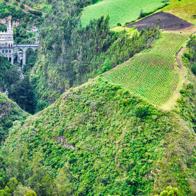 """Las Lajas in Lush Green Rainforest"" stock image"
