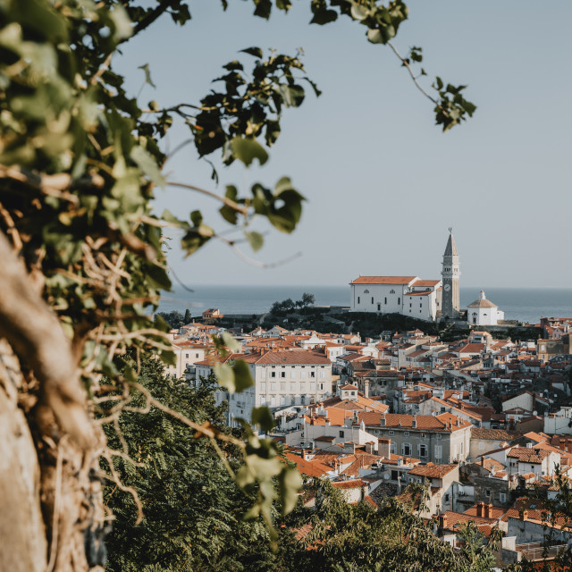 """The view of the historical port Slovenian town Piran with typical St. George's Parish Church above it with the Adriatic sea and clear blue sky in the background during the summer morning"" stock image"