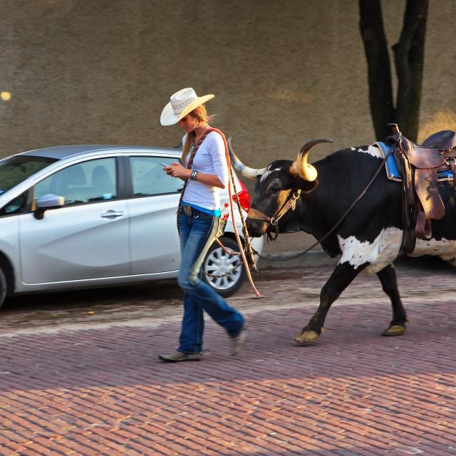 """Modern Texas Cowgirl"" stock image"