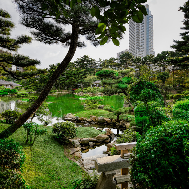 """Kenrokuen Garden in Summer"" stock image"