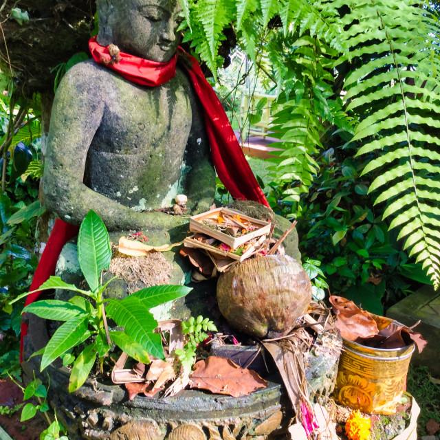 """Buddha Statue in Tropical Garden"" stock image"