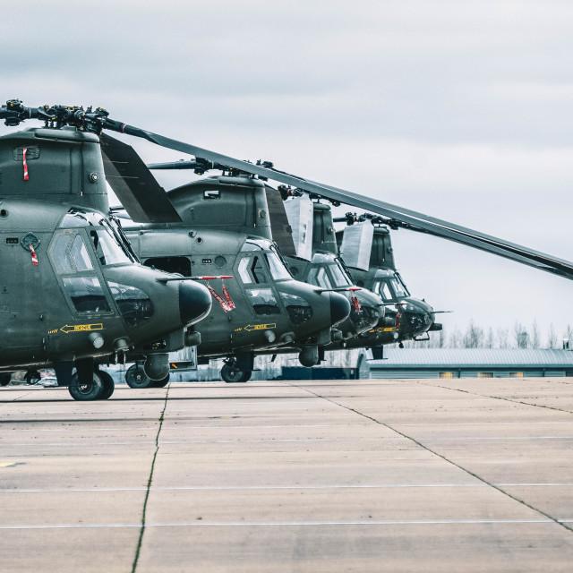 """RAF Chinooks"" stock image"