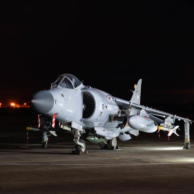 """Royal Navy Sea Harrier"" stock image"