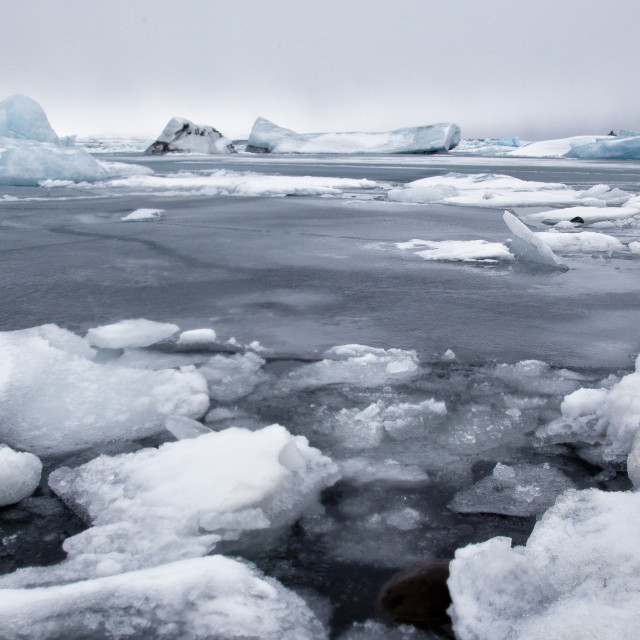 """""""JOKULSARLON ICEBERG LAGOON IN ICELAND"""" stock image"""