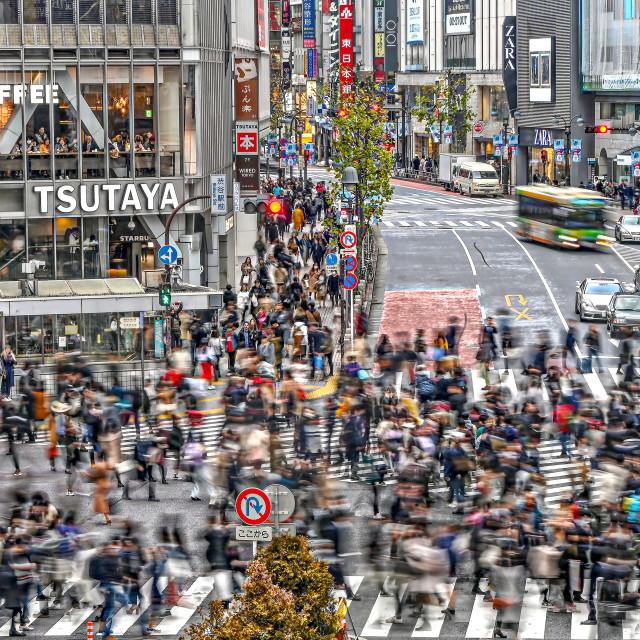 """Shibuya Crossing 02"" stock image"