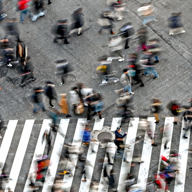 """Shibuya Crossing 04"" stock image"
