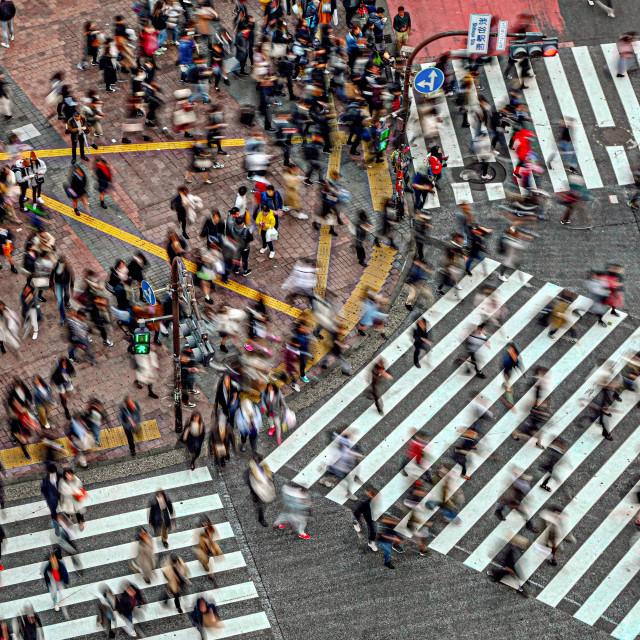 """Shibuya Crossing 05"" stock image"
