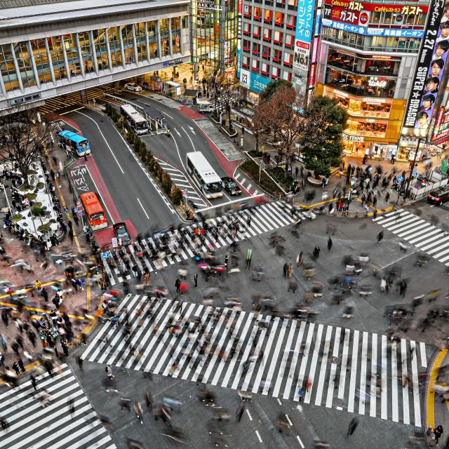 """Shibuya Crossing 06"" stock image"