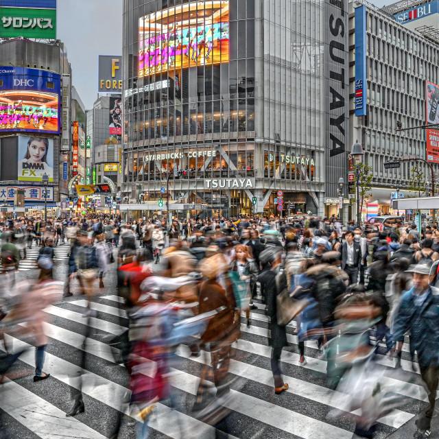 """Shibuya Crossing 03"" stock image"