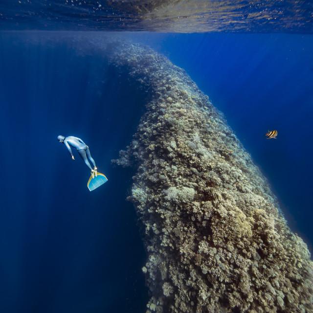 """""""Facing the Deep"""" stock image"""