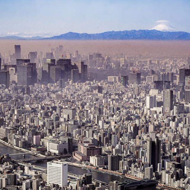 """Tokyo Cityscape 02"" stock image"