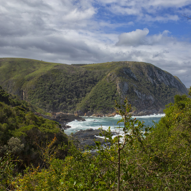 """Coastline Garden Route, South Africia"" stock image"