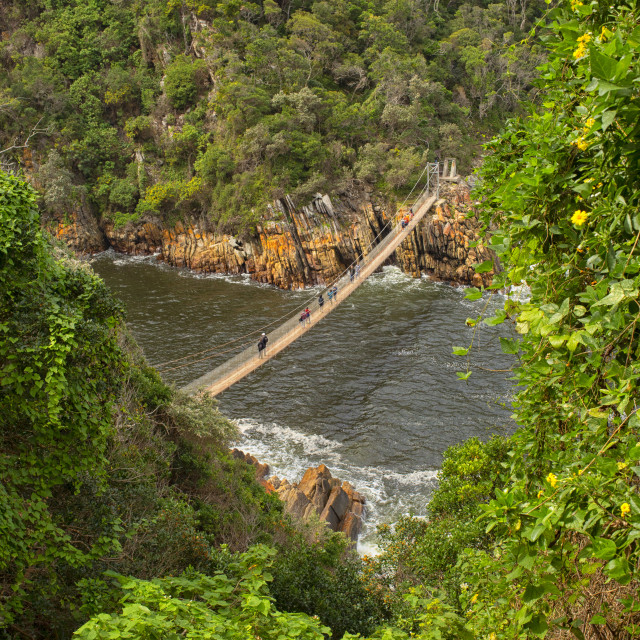 """""""People on the suspension bridge at Storms River Mouth,Tsitsikamma National Park, Garden Route, near Port Elizabeth,South Africa"""" stock image"""