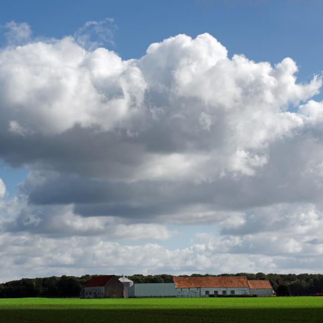 """Farm"" stock image"