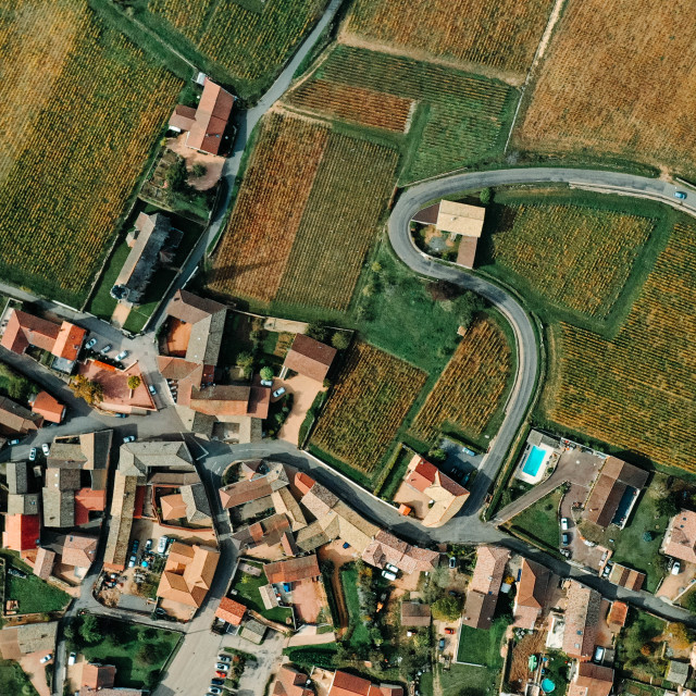 """""""Drone point of view shot of a village with orange roofs, winding roads and surrounded by vineyards - stock photo"""" stock image"""
