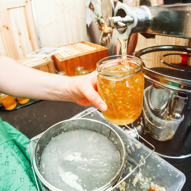 """""""Beekeeper is filling a jar with honey"""" stock image"""