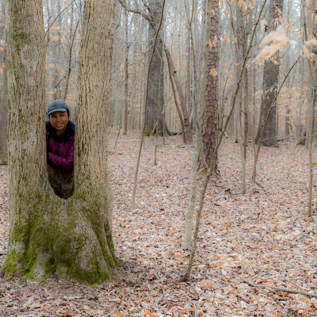 """""""Asian woman in hat standing between a split tree trunk on a winter day"""" stock image"""