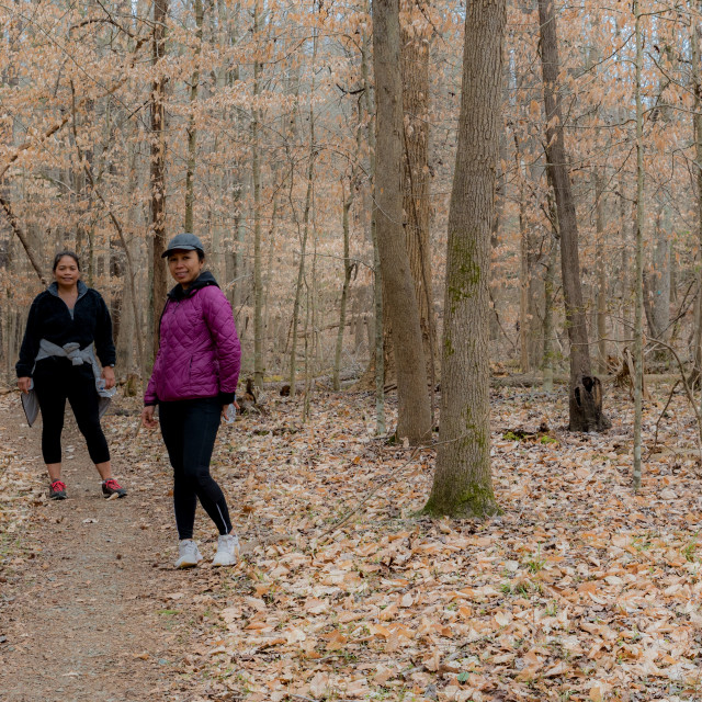 """""""Two women in coats and sneakers walking on path through the forest on trail"""" stock image"""