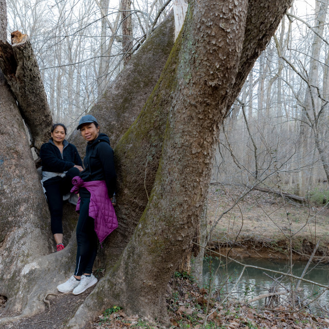 """""""Two women in coats and sneakers posing by tree in the forest by trail"""" stock image"""