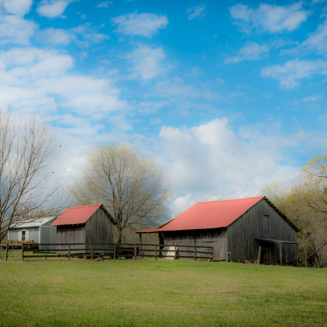 """""""Small barns in a field with cloudy blue sky in the background"""" stock image"""