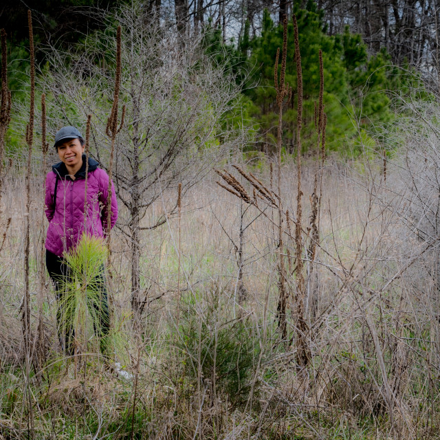 """""""Woman in cap and purple coat standing amid the brush in a forest"""" stock image"""
