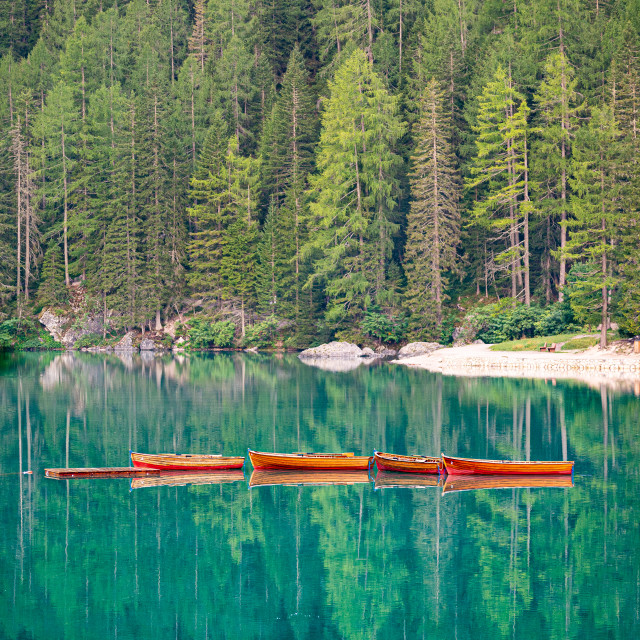 """""""Row of wooden boats tied up in the middle of Lake Braies at first light in..."""" stock image"""