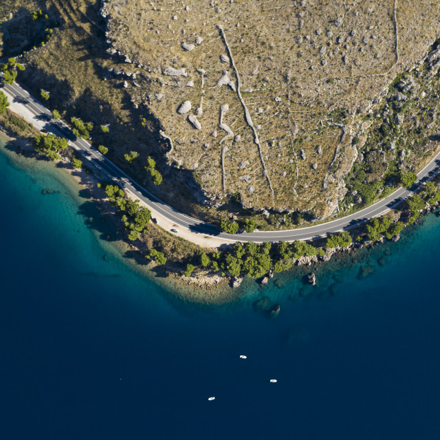 """""""Aerial shot of a coastal road with beautiful pine trees"""" stock image"""