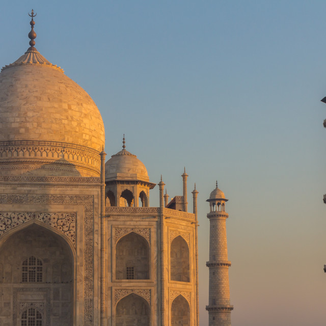 """The façade of the Taj Mahal lit by the sun rising on the right"" stock image"
