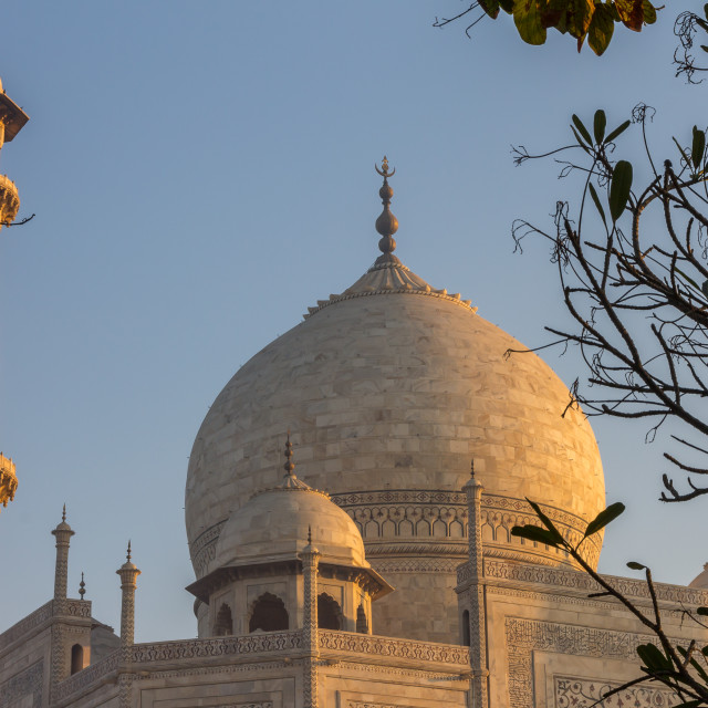 """Taj Mahal's dome & minaret lit by the golden light of sunrise"" stock image"
