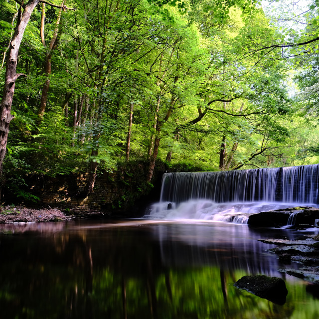 """""""Weir on River Ryburn"""" stock image"""