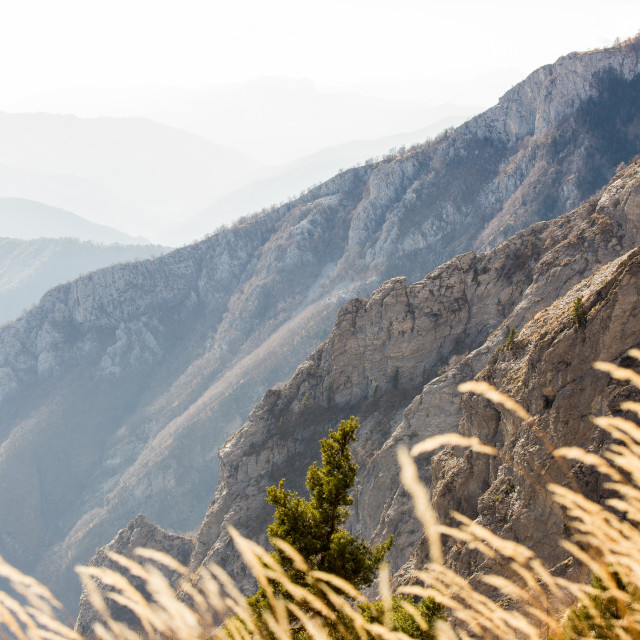 """The Ligurian Alps"" stock image"