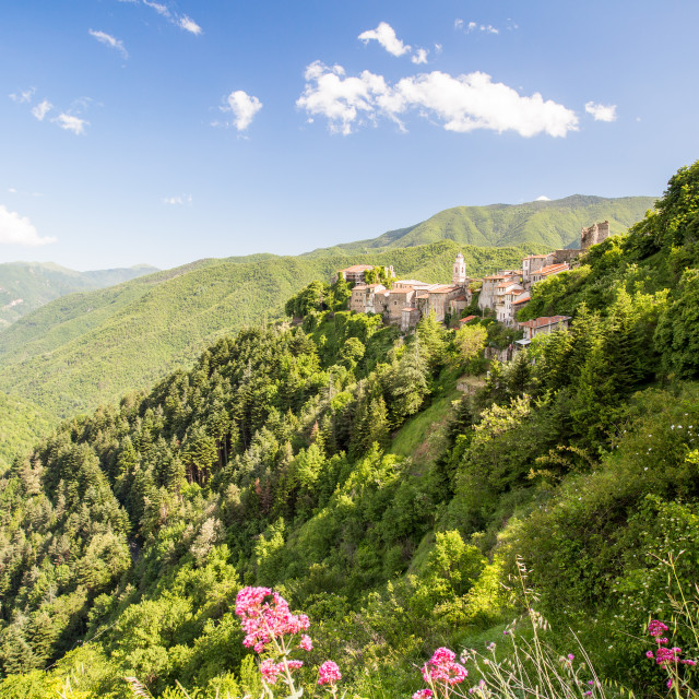 """""""Triora Perched In The Green Hills"""" stock image"""