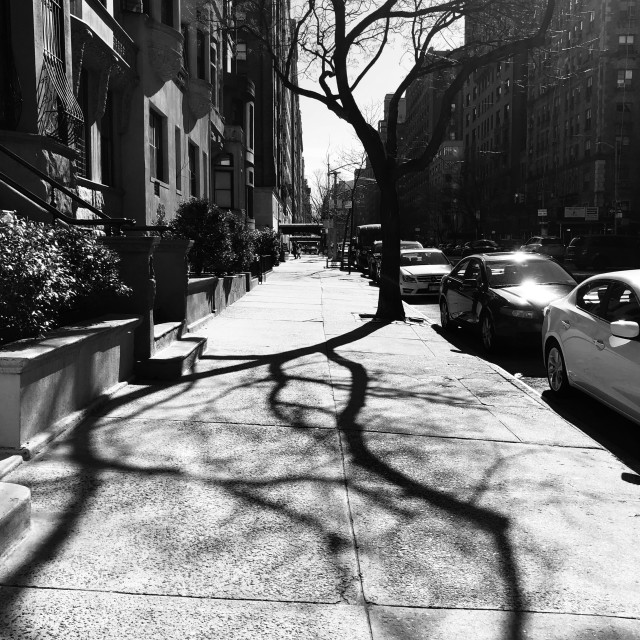 """""""City veins, Upper East Side, NY 2020"""" stock image"""