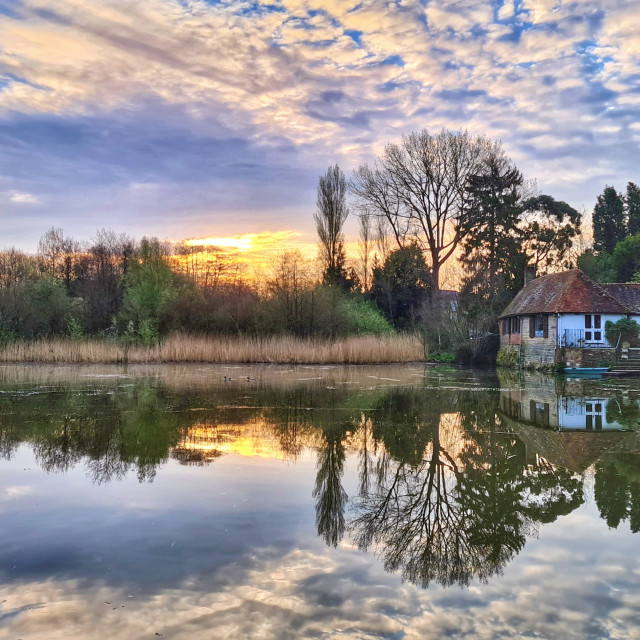 """Mill Pond reflections"" stock image"