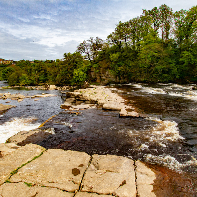 """Richmond, North Yorkshire, Ricmond Waterfalls, River Swale."" stock image"