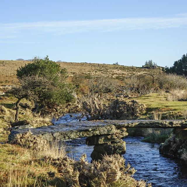 """""""Teign-E-Ver Clapper Bridge, Dartmoor"""" stock image"""