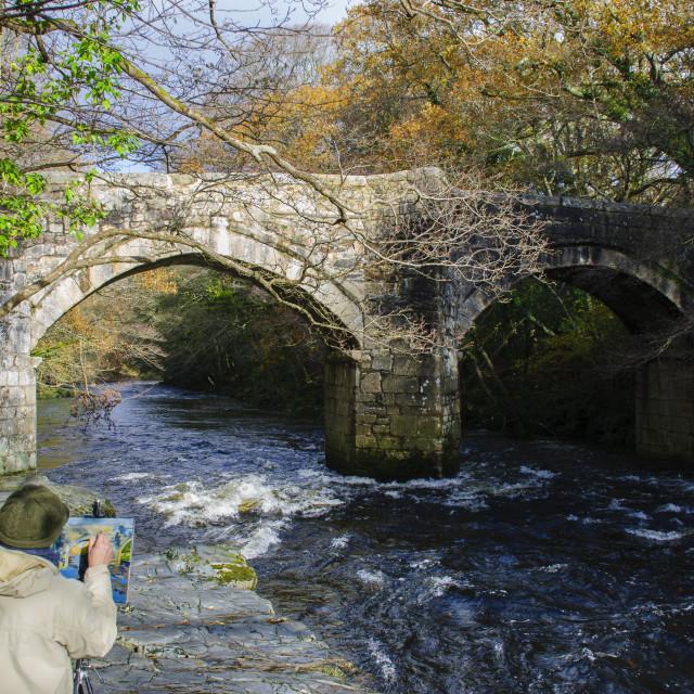 """Newbridge, Dartmoor"" stock image"