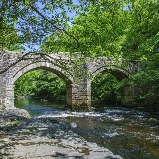 """""""Newbridge, Dartmoor in Summer"""" stock image"""