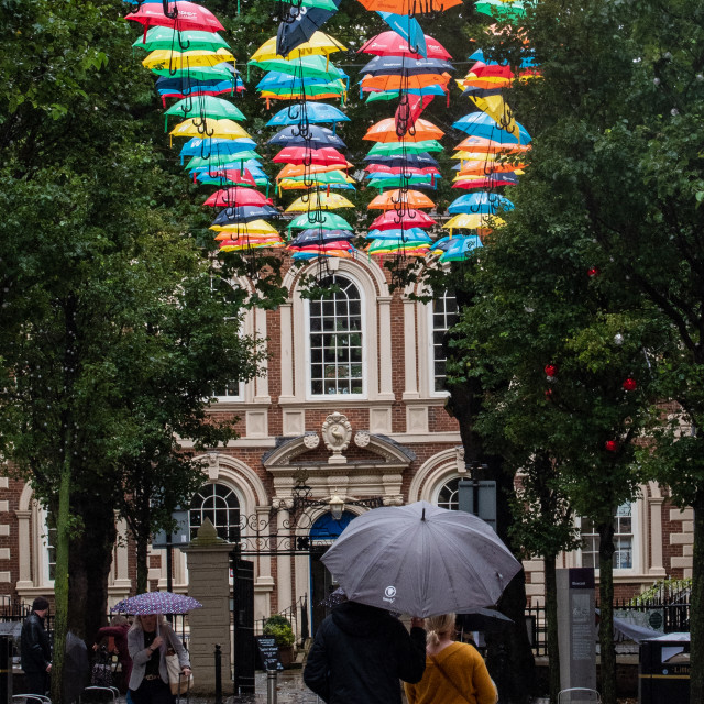"""""""Umbrellas on a Wet Day in Liverpool"""" stock image"""