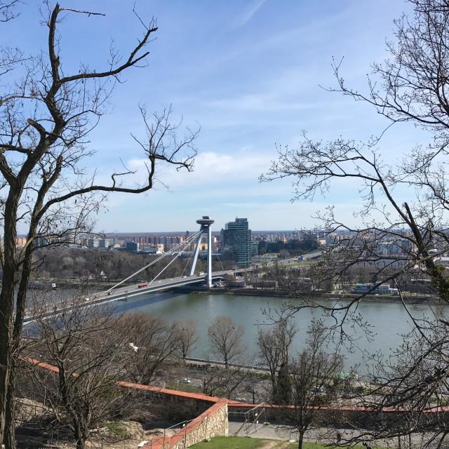 """""""Bratislava on the Danube"""" stock image"""